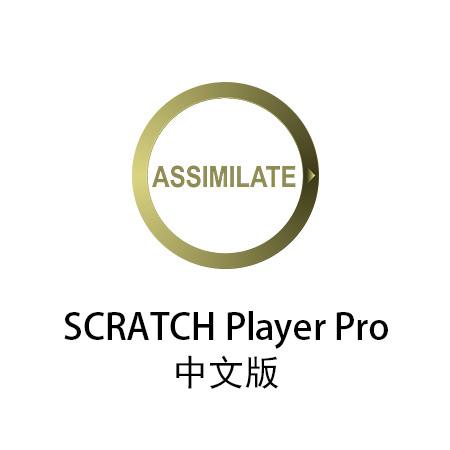 SCRATCH_PP_Buy_Option